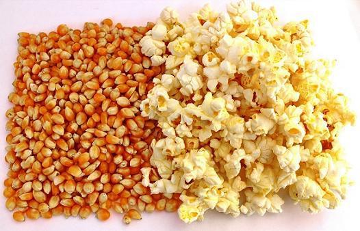 Как сделать кукурузу для попкорна 741